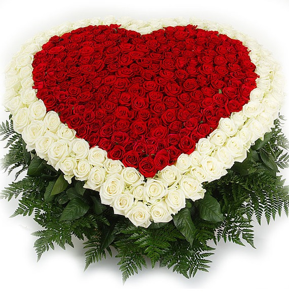 Композиция Счастливая любовь (101, 301 или 501 роза) 101 роза