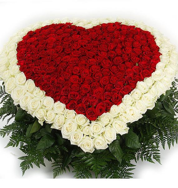 Композиция Счастливая любовь (101, 301 или 501 роза) – фото № 5