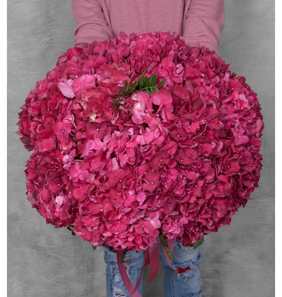 Букет гортензий Ruby Red (17 или 35) – фото № 1