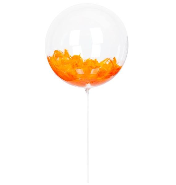 Эксклюзивный воздушный шар с перьями