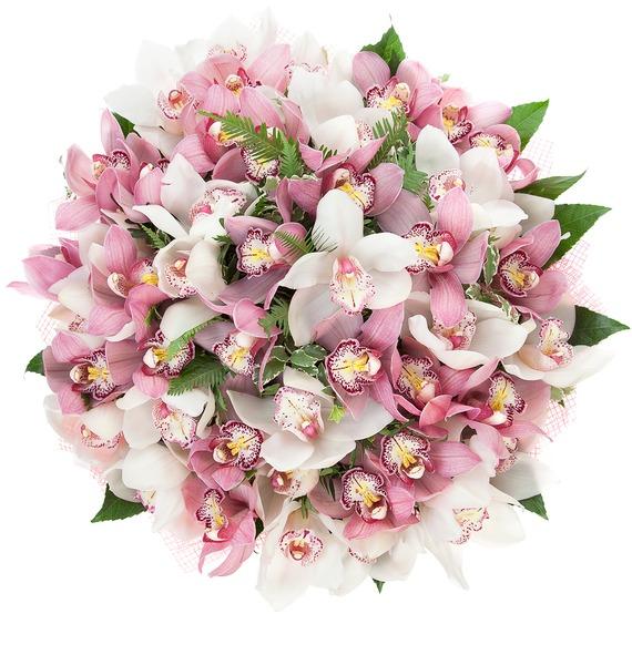 Букет из 45 орхидей Cymbidium – фото № 5