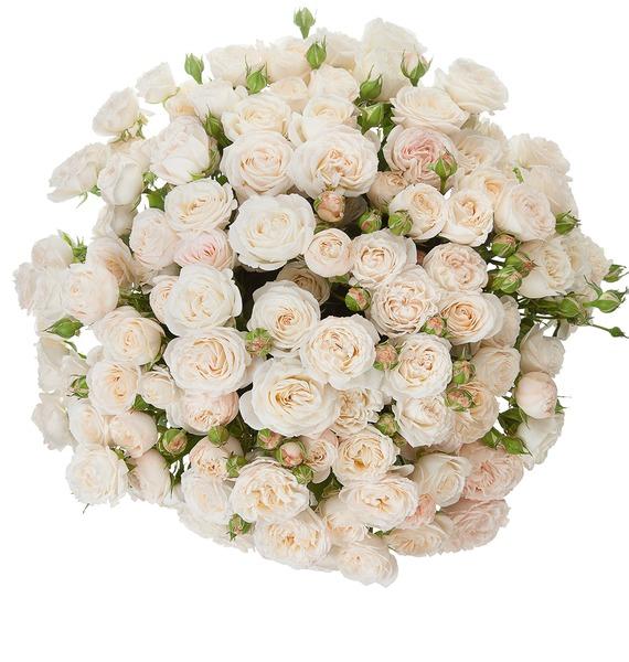 Букет из пионовидных кустовых роз Bombastic – фото № 5