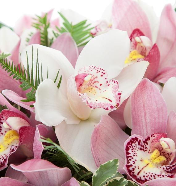 Букет из 45 орхидей Cymbidium – фото № 4