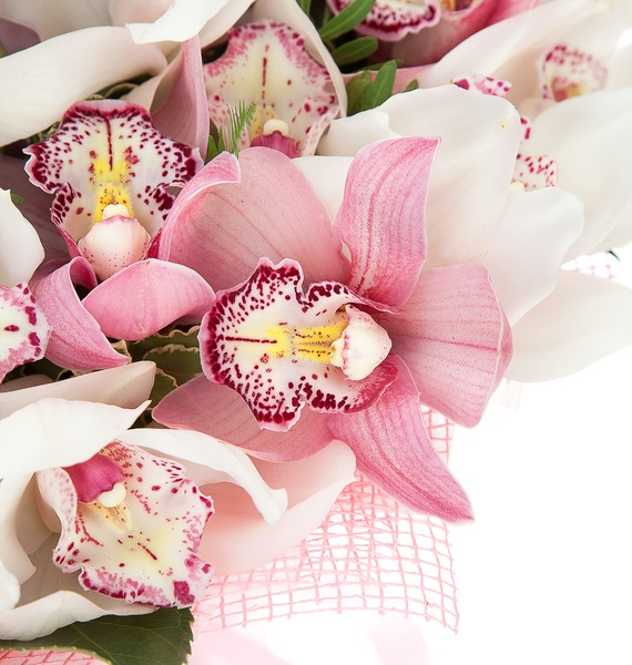 Букет из 45 орхидей Cymbidium – фото № 3