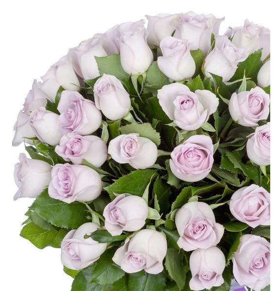 Букет роз Morning Dew (25, 51 или 75 роз) – фото № 2