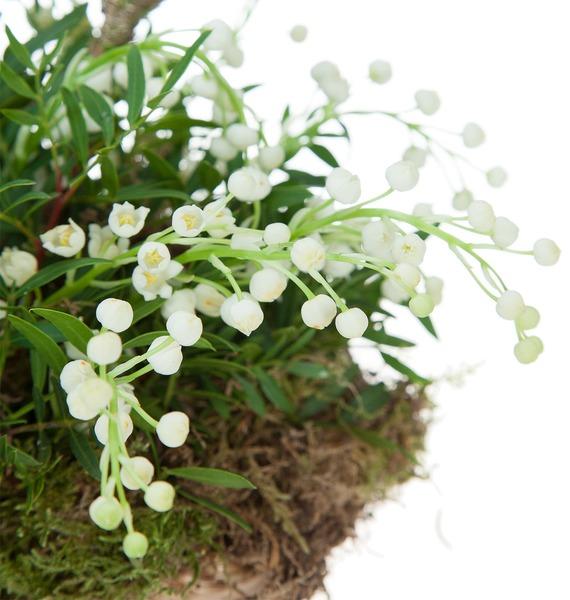 Композиция Первые цветы – фото № 4