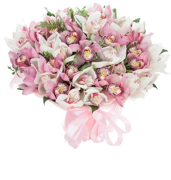 Букет из 45 орхидей Cymbidium – фото № 1