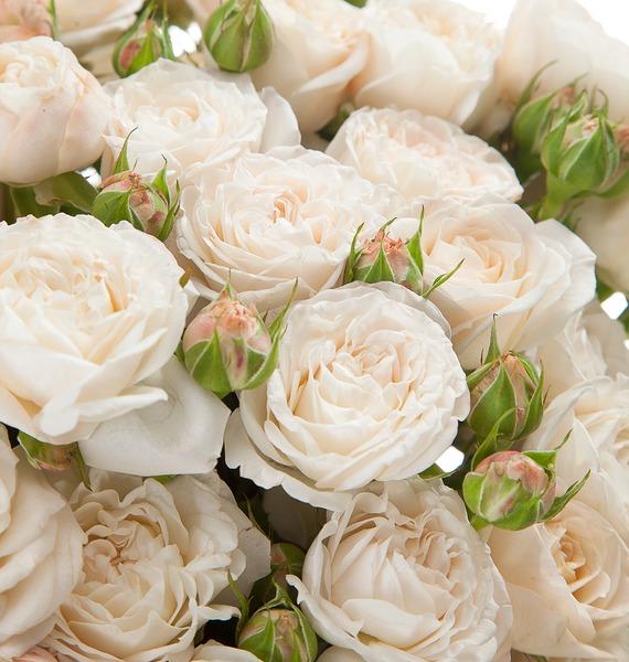 Букет из пионовидных кустовых роз Bombastic – фото № 3