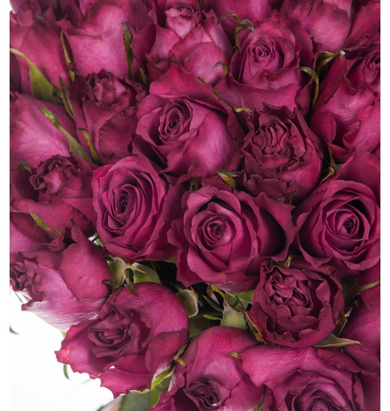 Букет из роз Blueberry (25,51 или 101 роза) – фото № 2