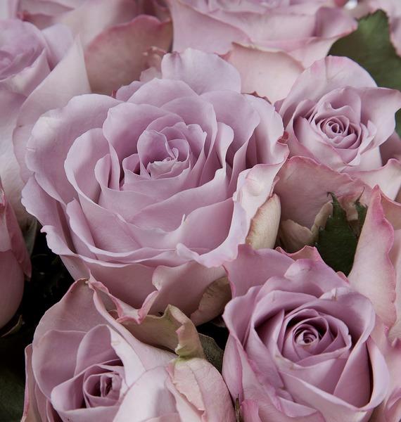 Букет из роз Memory Lane (25, 45 или 101) – фото № 4