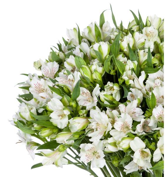 Bouquet Brilliant (25, 51 or 101 alstroemeria) – photo #4