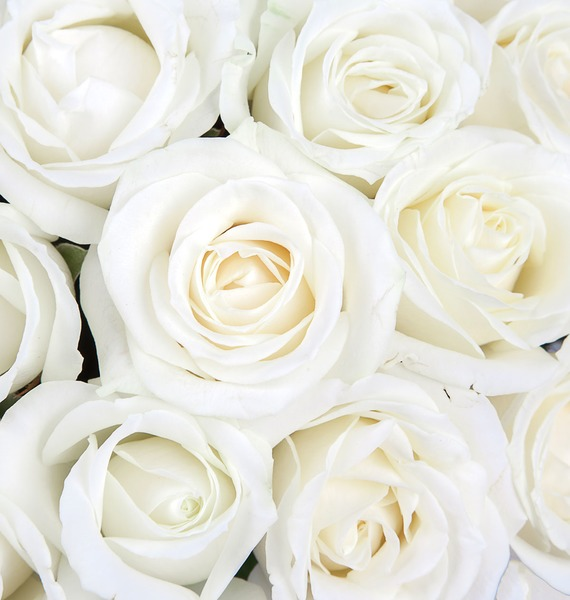 Букет из белых роз (25, 51 или 75) – фото № 4