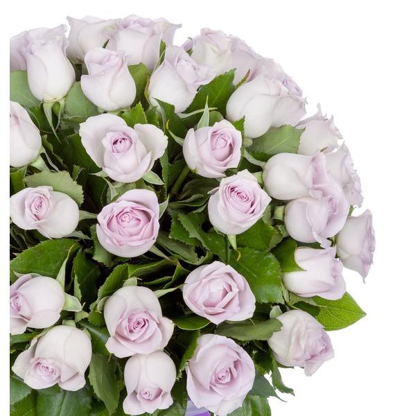 Букет роз Morning Dew (25, 51 или 75 роз) – фото № 3