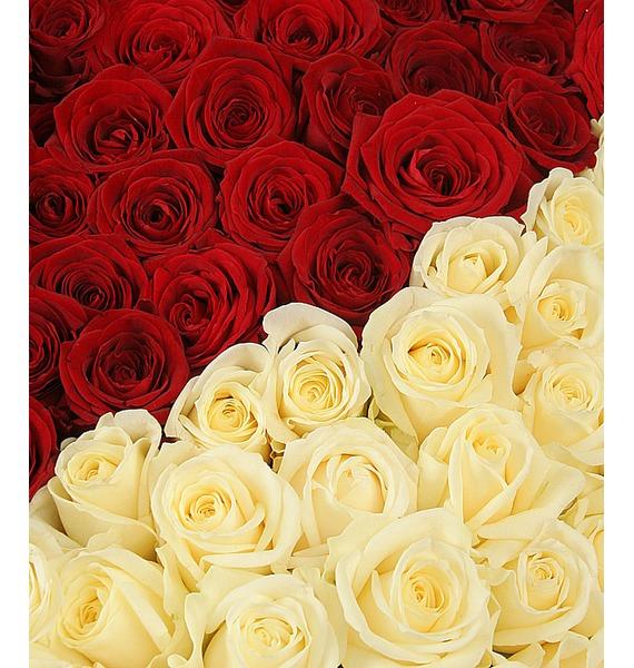 Композиция Созданы быть вместе (1001 роза) – фото № 5