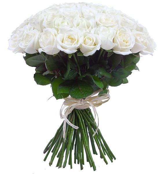 Букет из белых роз (25, 51 или 75) – фото № 2