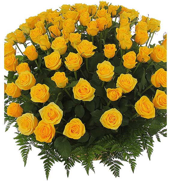 Солнце в подарок!, композиция из 51, 101 или 151 розы 101 роза мишка в подарок