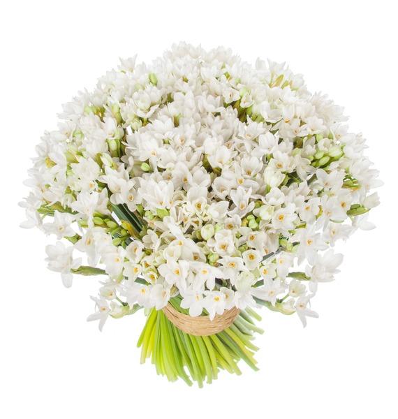 Букет кустовых белых нарциссов (25, 51 или 101) – фото № 4