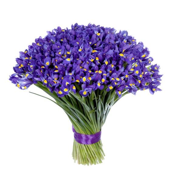 Bouquet of irises Favorite eyes (101, 151 or 201 iris) – photo #5