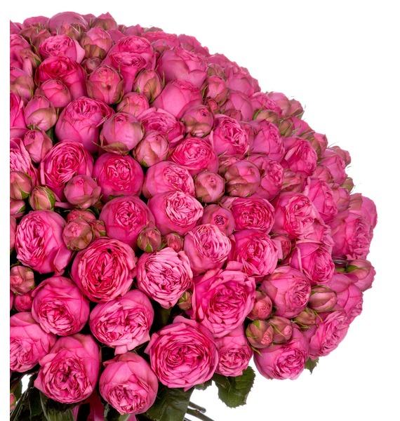 Букет из 151 пионовидной розы Pink Piano – фото № 3