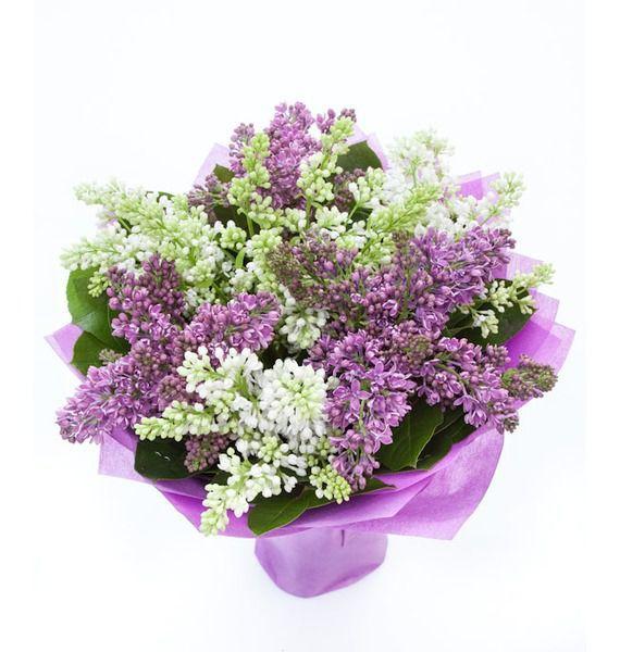 цветы сирень с доставкой
