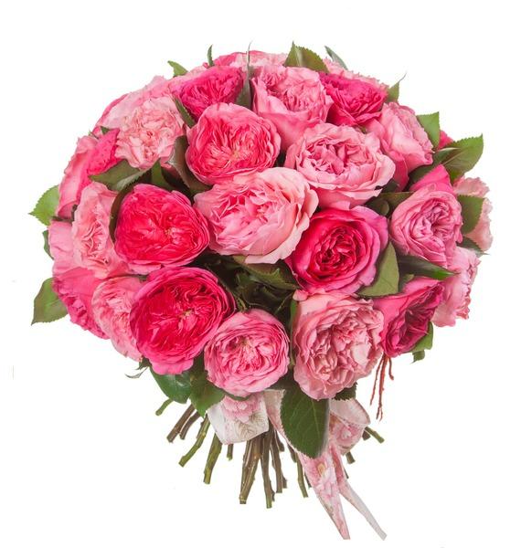 Букет из пионовидных роз Великолепие (15, 25 или 51) – фото № 5