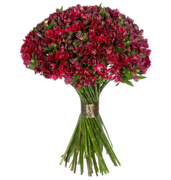 Bouquet Ruby (25, 51 or 101 alstroemeria) – photo #3