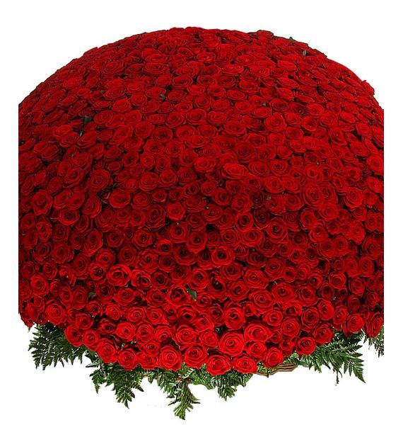 Композиция из 1001 розы Сенсация ковш idea деко розы 1 5 л