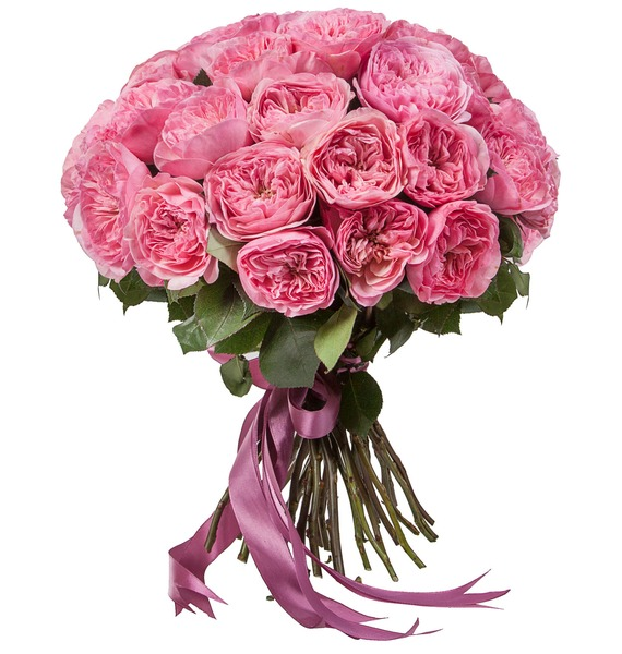 Bouquet of pion-shaped roses Maria Theresia (15, 25 or 51) – photo #2
