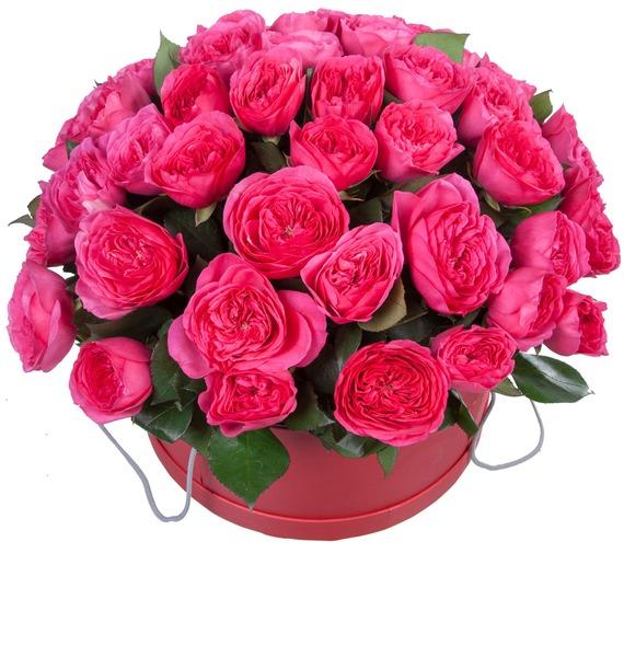 Композиция из 51 розы Baronessa – фото № 5