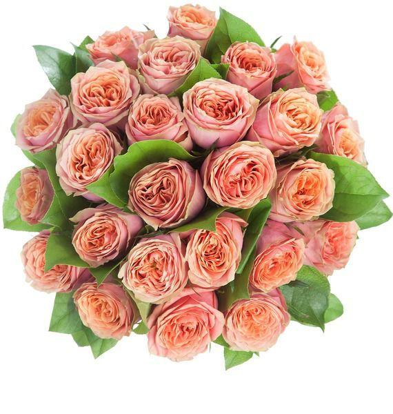 Букет роз Wild Look (25, 51 или 101 роза) – фото № 5