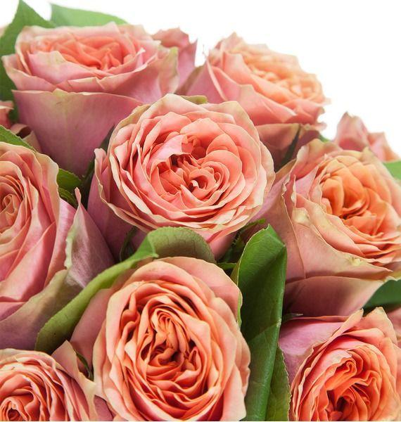 Букет роз Wild Look (25, 51 или 101 роза) – фото № 4