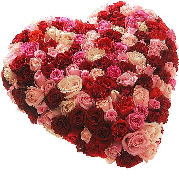 Композиция из роз Нежность и страсть – фото № 1