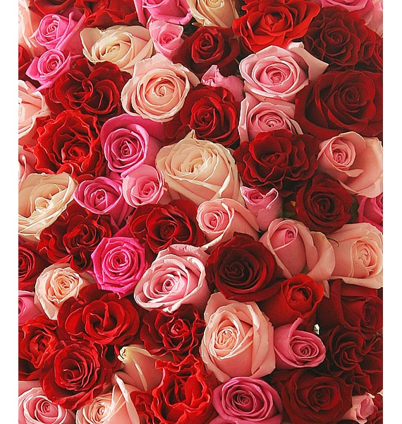 Композиция из роз Нежность и страсть – фото № 2