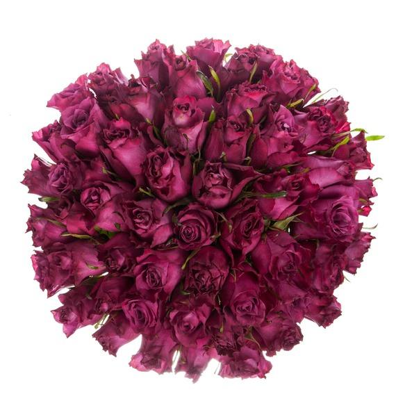 Букет из роз Blueberry (25,51 или 101 роза) – фото № 4