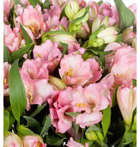 Bouquet Topaz (25, 51 or 101 alstroemeria) – photo #5