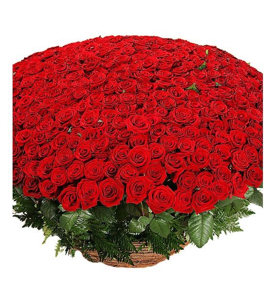 Композиция из 501 розы Гран При Любовь всегда права! – фото № 4