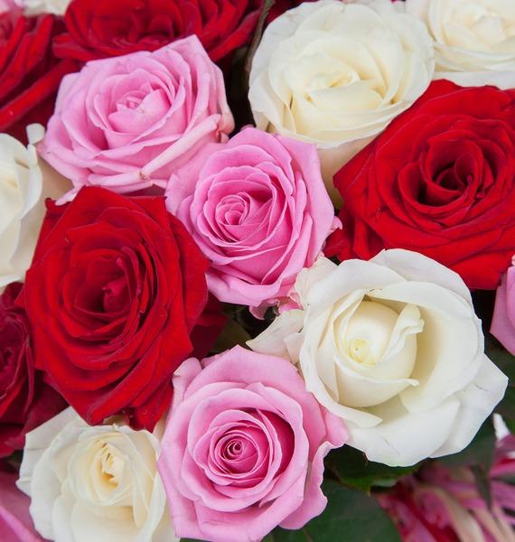 Букет роз Ягодное лето (35, 51 или 101) – фото № 3