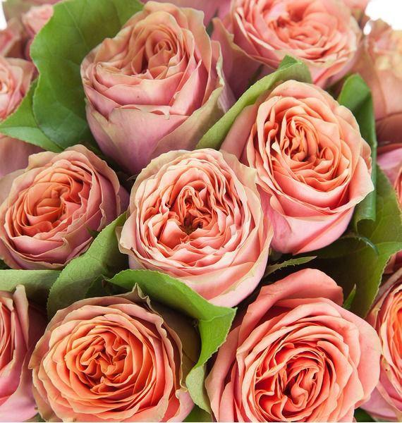 Букет роз Wild Look (25, 51 или 101 роза) – фото № 3