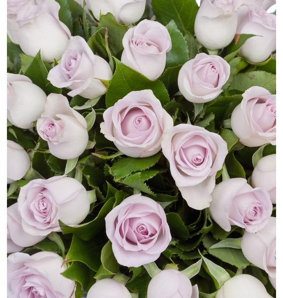 Букет роз Morning Dew (25, 51 или 75 роз) – фото № 5