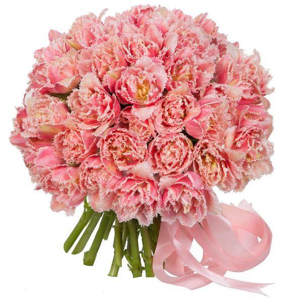 """Букет из эксклюзивных тюльпанов """"Queensland"""" разноцветное настроение букет разноцветных тюльпанов"""