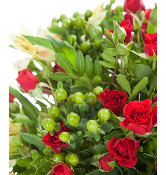 Bouquet Salsa – photo #5