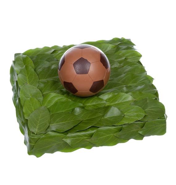 Композиция Футбольный мяч мяч футбольный select talento арт 811008 005 р 3