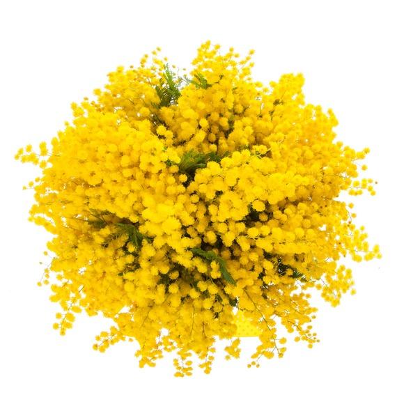 Композиция Запах весны – фото № 3