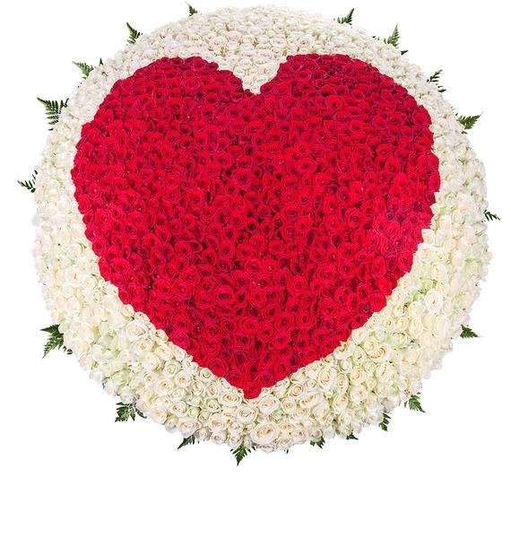 Композиция Мое сердце - тебе (1001 роза) – фото № 5
