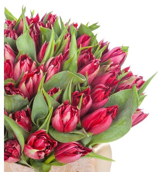 Пионовидные тюльпаны Robinho в вазе – фото № 3