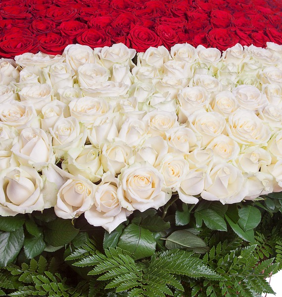 Composition My heart for you (1001 Roses) – photo #4