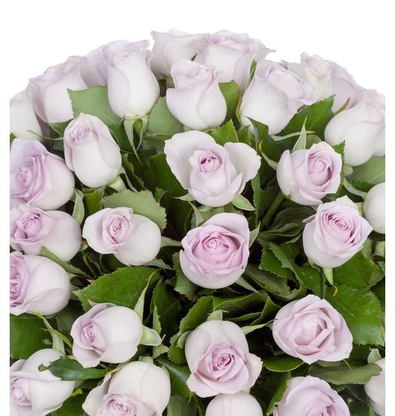 Букет роз Morning Dew (25, 51 или 75 роз) – фото № 4