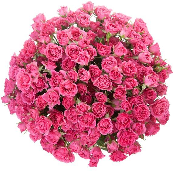 Букет Розовое настроение (25, 51 или 101) – фото № 5