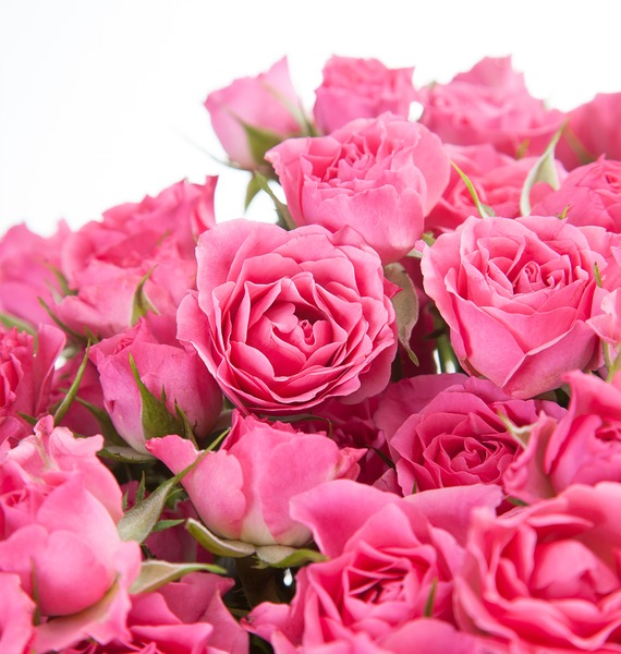 Букет Розовое настроение (25, 51 или 101) – фото № 4