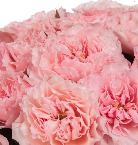 Букет из пионовидных роз Mayras Rose (15, 25 или 51) – фото № 4